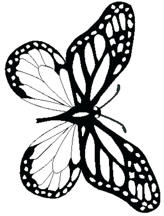 640x844 Monarch Butterfly Coloring Page Butterfly Coloring Book Free