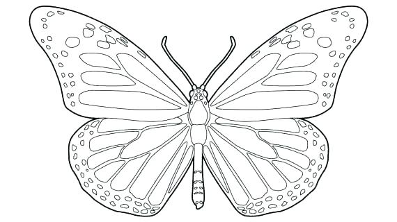 570x320 Monarch Butterfly Coloring Page Butterfly Coloring Pages Butterfly