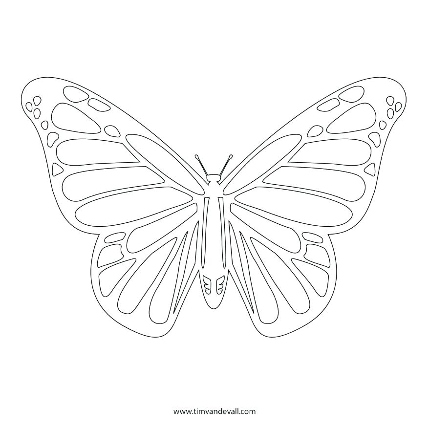 878x878 Monarch Butterfly Coloring Page In Addition To Butterfly Coloring