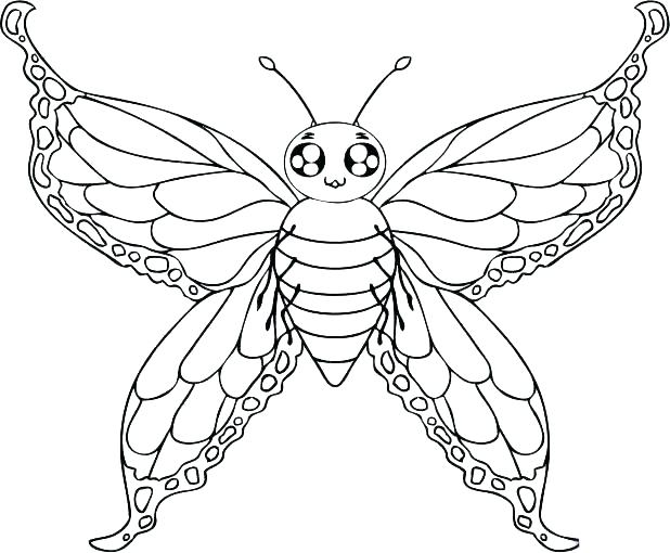 618x510 Printable Butterfly Coloring Pages