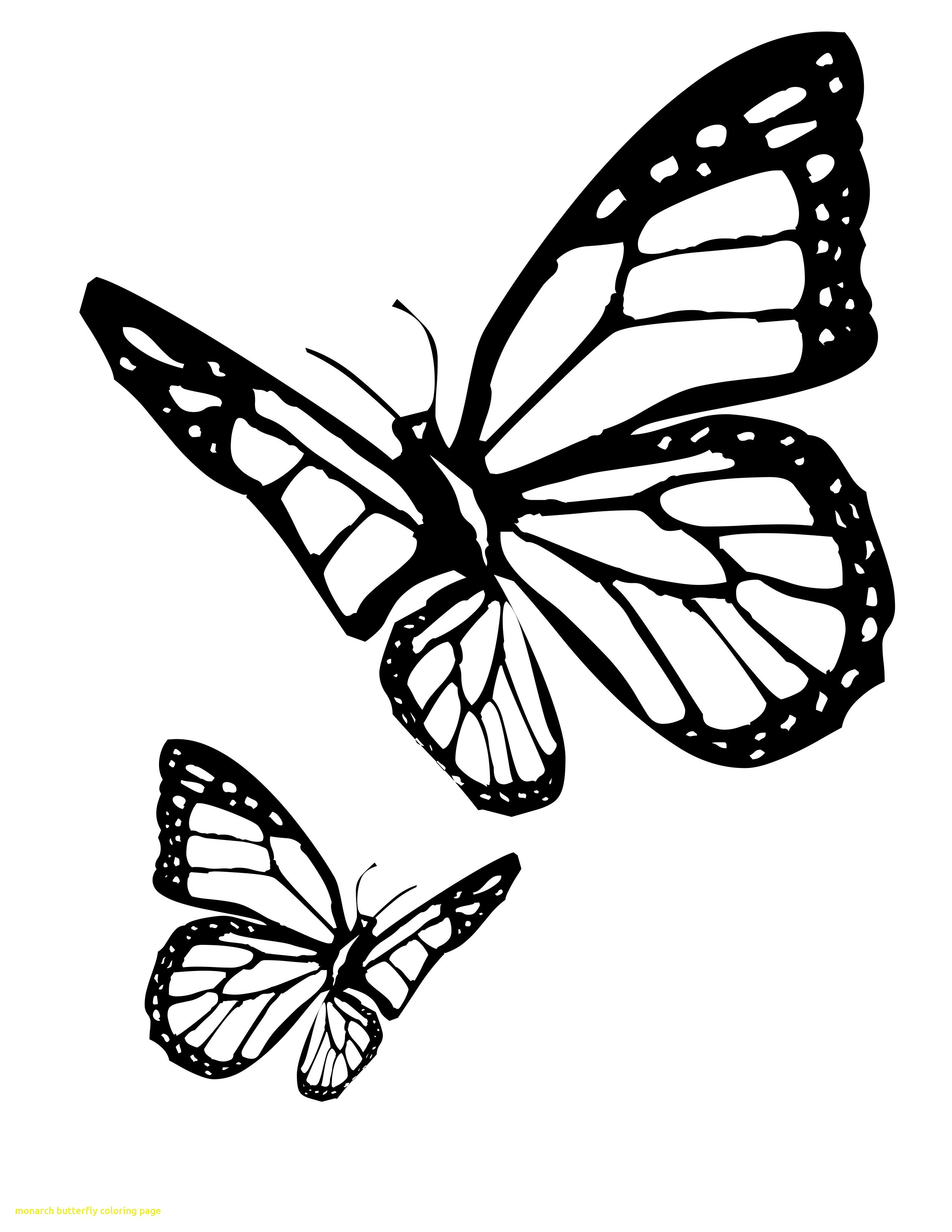 2550x3300 Monarch Butterfly Coloring Page With Butterfly Coloring Page