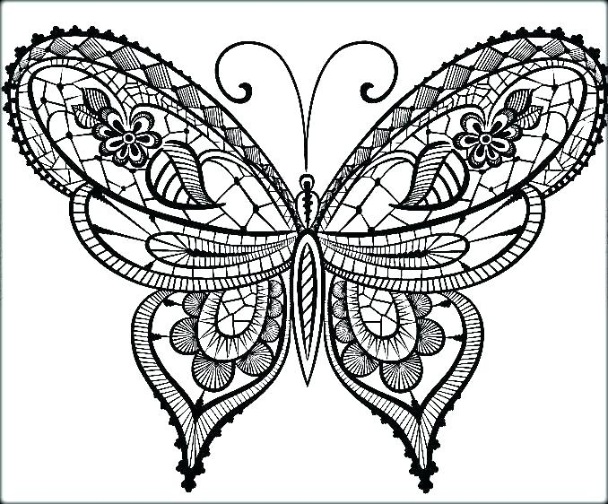 678x562 Color Page Butterfly Coloring Page Of Butterfly Coloring Page
