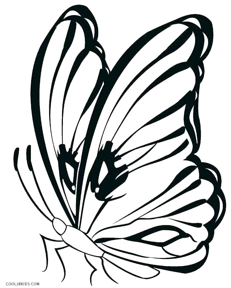760x950 Colouring Pages Butterfly Wings Monarch Coloring Page Free