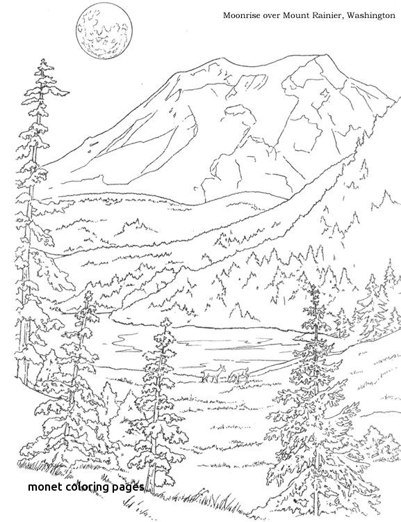 577x750 Woods Landscape Coloring Pages Google Search For Monet Coloring