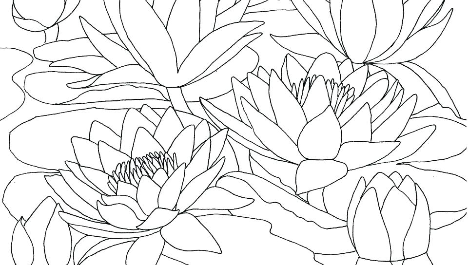 Water Lilies Evening Effect By Claude Monet Coloring Page - Free ... | 544x960