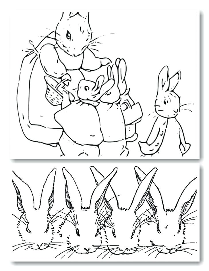 728x942 New Peter Rabbit Coloring Pages Printable Coloring Peter Rabbit