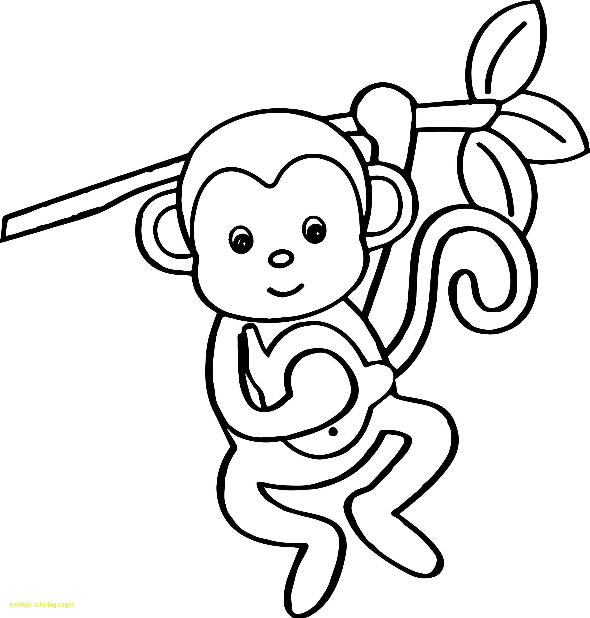 2500x2617 Monkey Coloring Pages With Cartoon Animals Kids Monkey Coloring