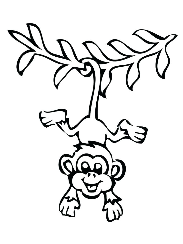 750x1000 Free Monkey Coloring Pages Free Printable Monkey Coloring Pictures