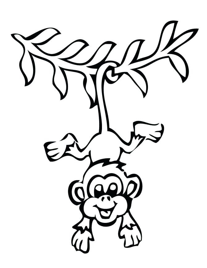 670x867 Free Online Monkey Coloring Pages Kids Coloring Monkey Coloring