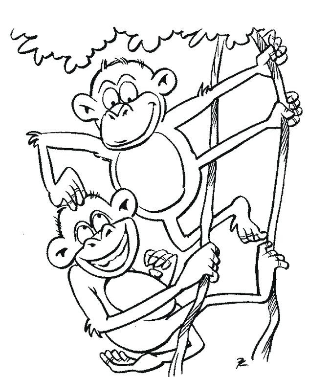 675x771 Free Printable Monkey Color Pages Printable Coloring Coloring