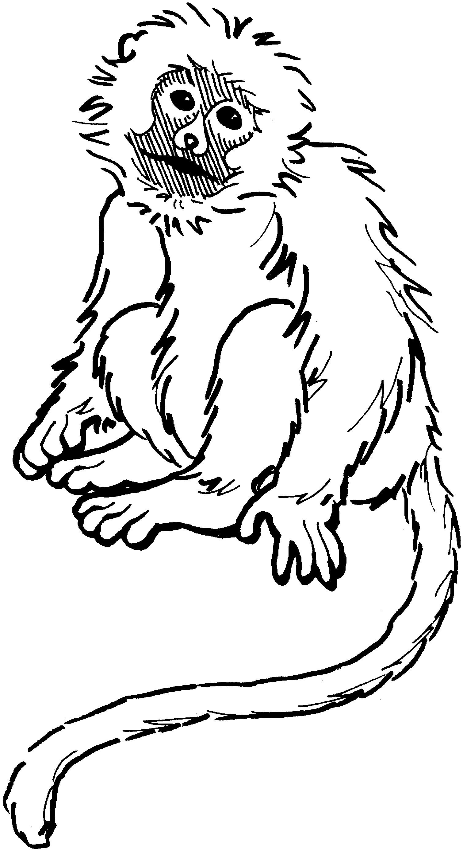 1510x2771 Printable Monkey Coloring Pages Coloring Me