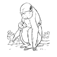 230x230 Top Free Printable Monkey Coloring Pages For Kids