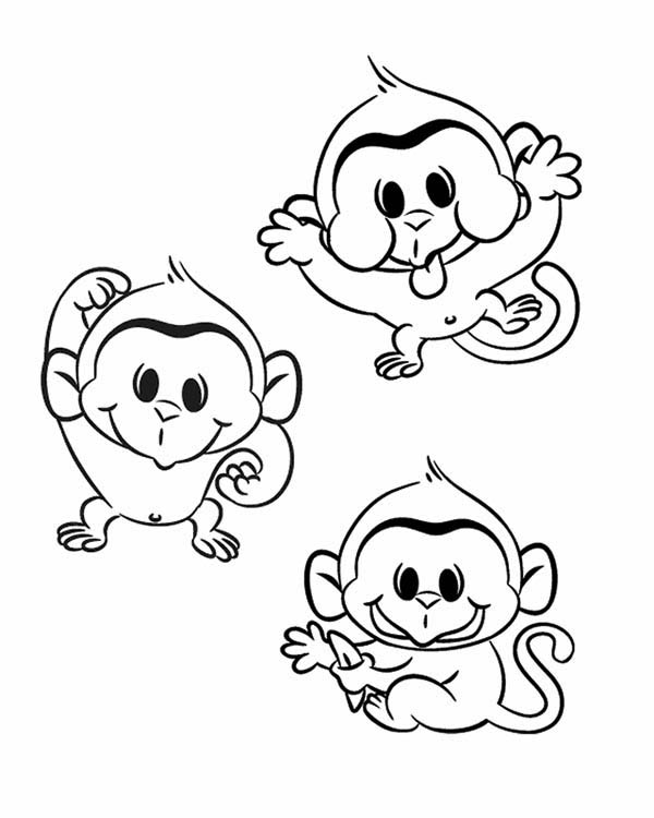 600x750 Three Funny Monkey Coloring Page
