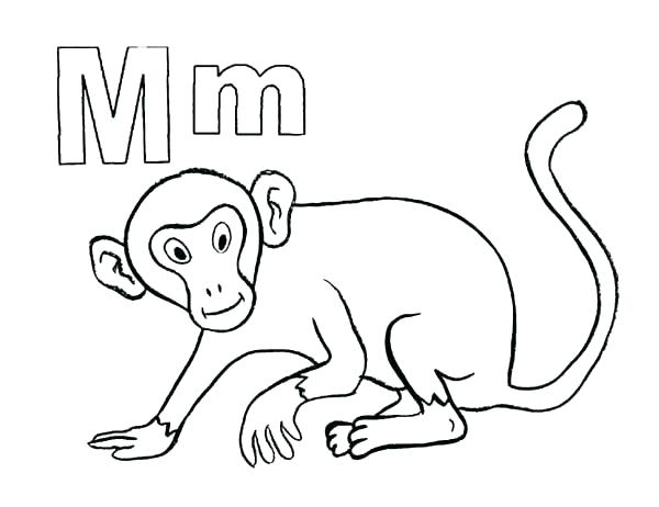 600x462 Cute Monkey Face Coloring Pages Kids Coloring Monkeys Coloring
