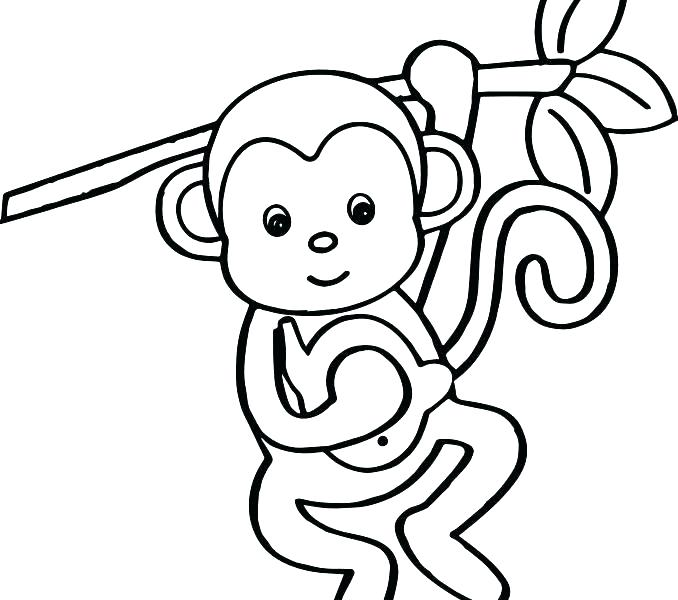 678x600 Monkey Coloring Sheet M Is For Monkey Coloring Page Spider Monkey