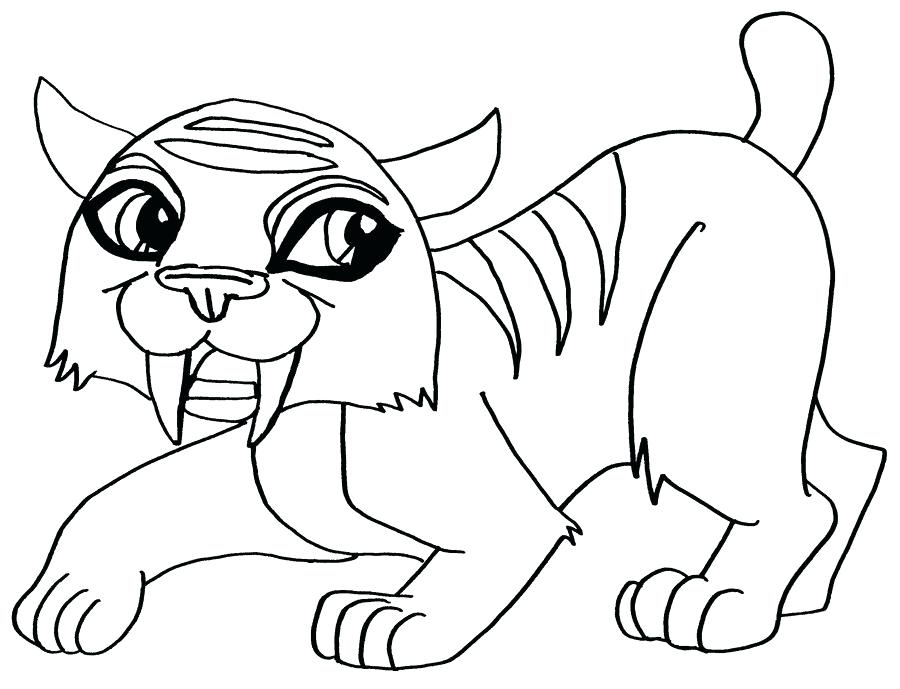 900x689 Coloring Pages Monster High Pets