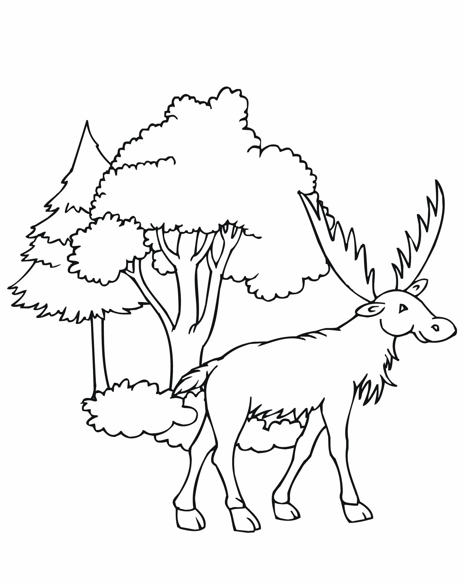 1500x1880 Free Printable Moose Coloring Pages For Kids