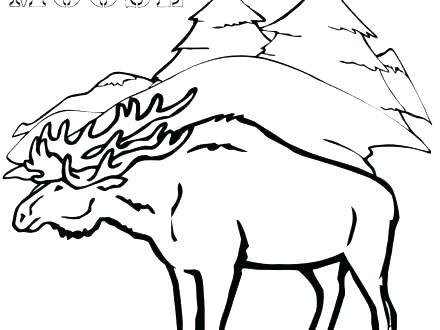 440x330 Moose Coloring Pages Moose Coloring Book Moose Coloring Page Elk