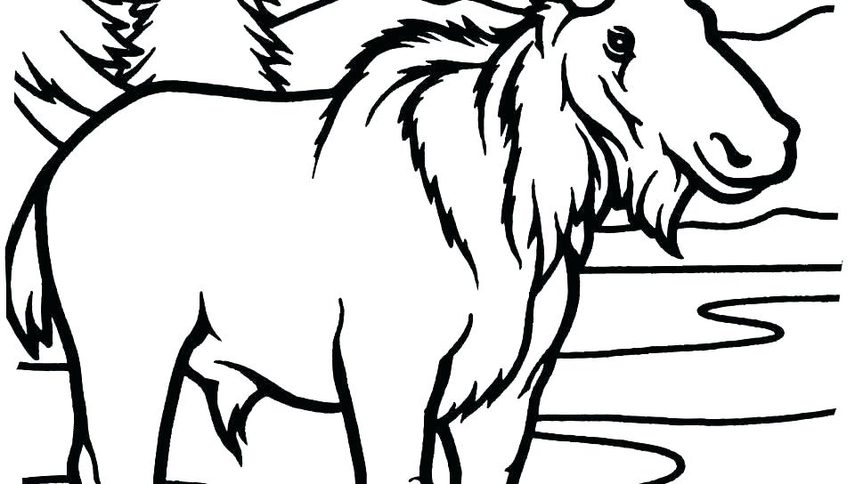 960x544 Muffin Coloring Pages Muffin Coloring Sheet Moose Coloring Pages