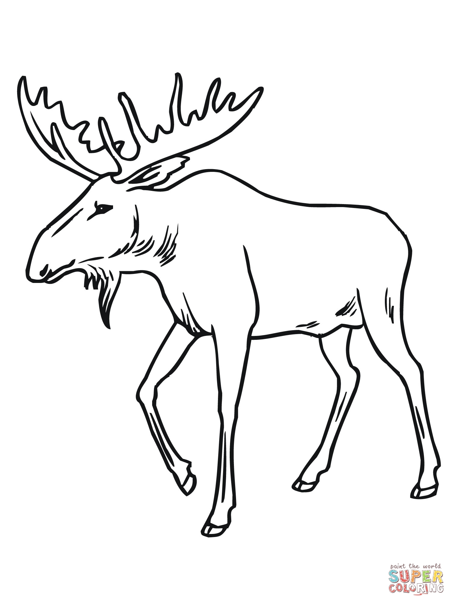 1500x2000 Bull Moose Coloring Page To Print