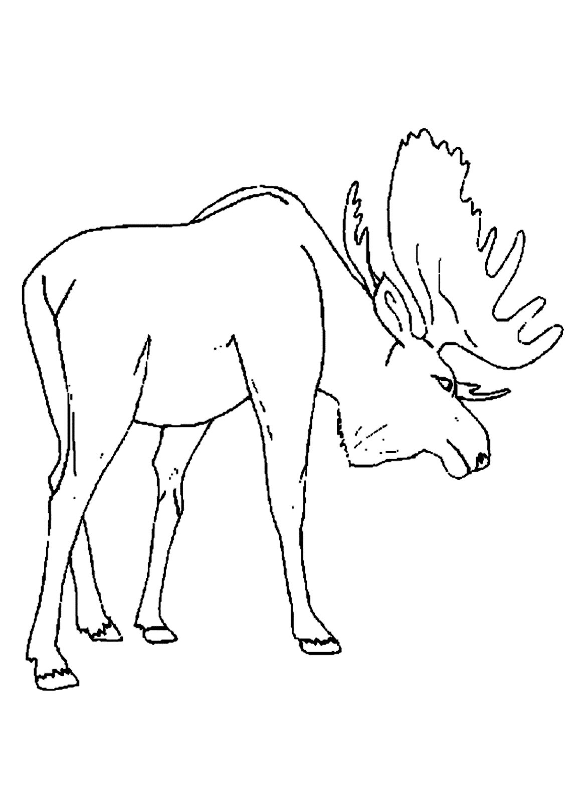 1157x1602 Printable Moose Coloring Pages Coloring Me