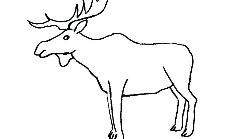 960x544 Elk Coloring Pages Bull Moose Coloring Page Free Printable Pages