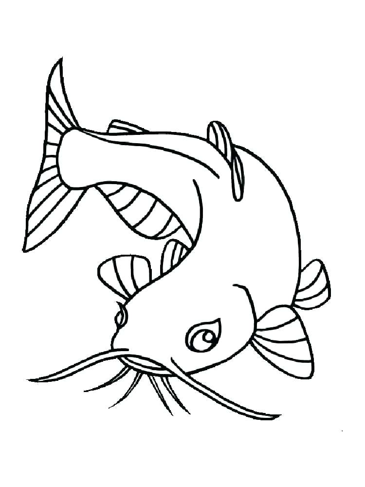 750x1000 Eel Plus Click To See Printable Version Of Eel Coloring Page