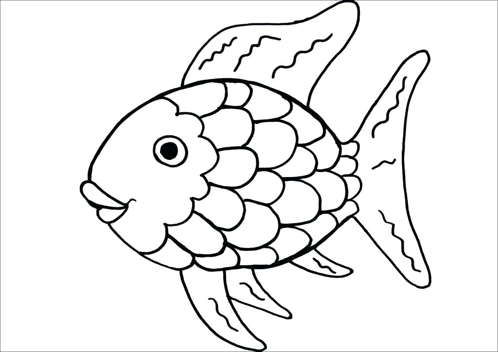 1024x724 Eel Coloring Pages