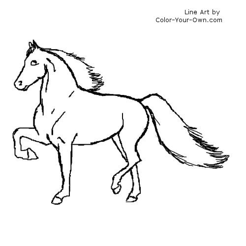 500x500 Gaited Morgan Horse Coloring Page