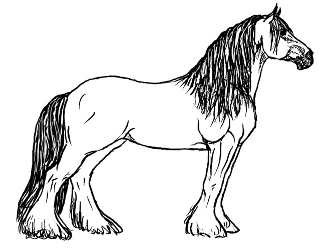 641x504 Horses Coloring Pages Fresh Horse Coloring Pages Coloringpagesabc