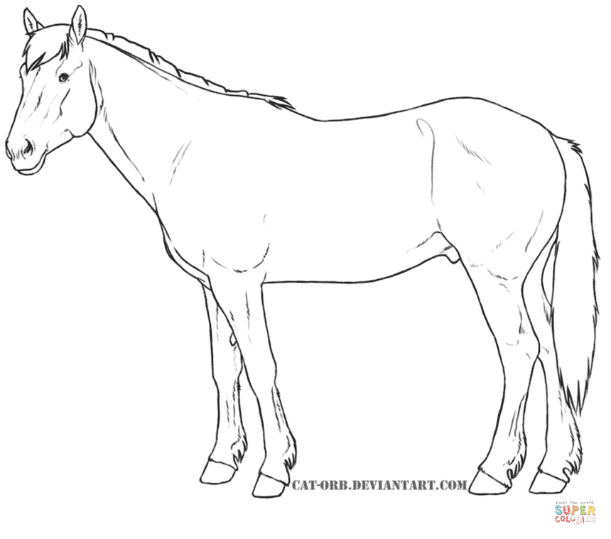 860x759 Horses Coloring Pages Free Coloring Pages Art