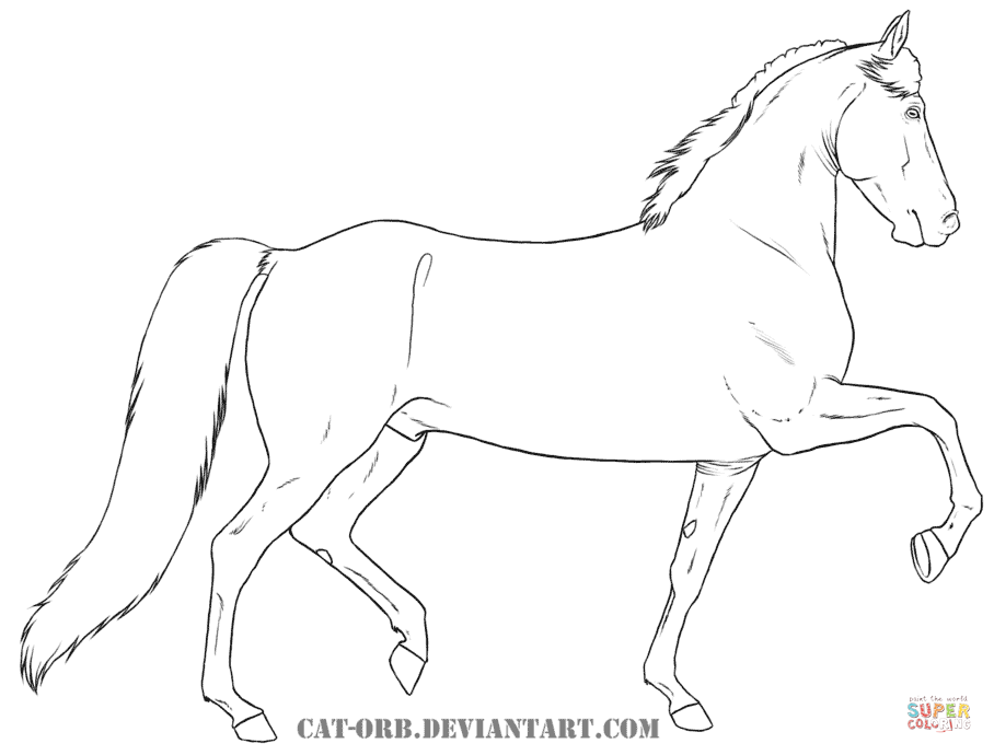 908x690 Morgan For Coloring Page
