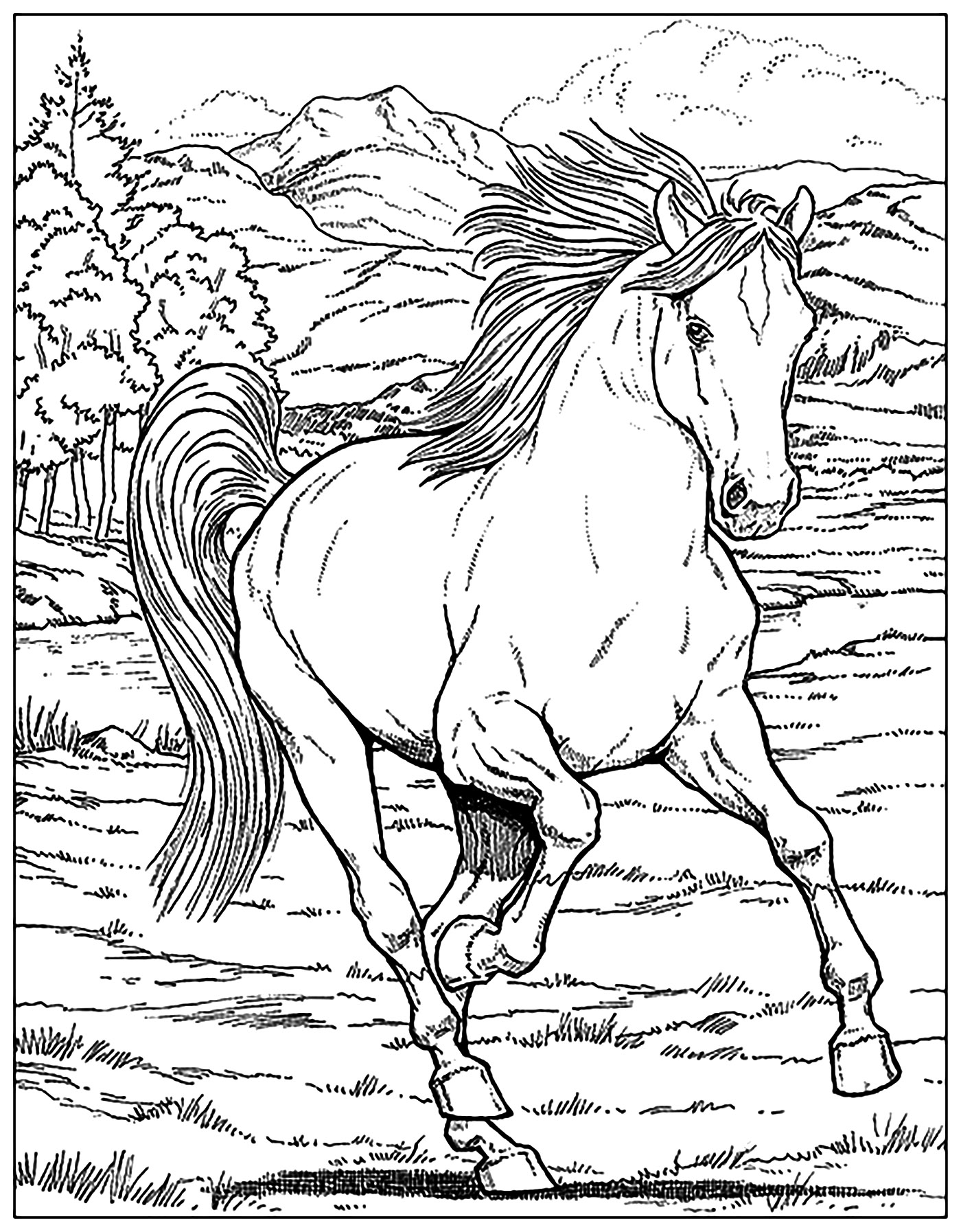 1400x1794 Mustang Horse Coloring Pages Pictures To Color Resume Readgyan