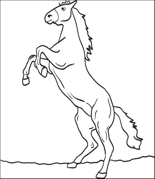 607x700 Clydesdale Coloring Pages
