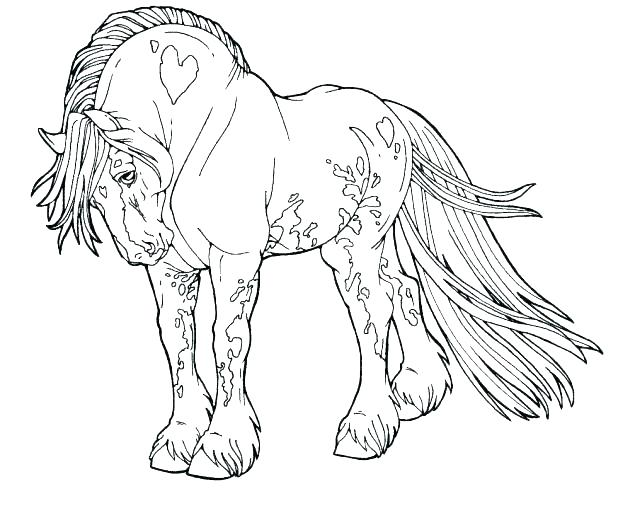 618x513 Coloring Pages Horses Free Best Of Printable Horse Color Also