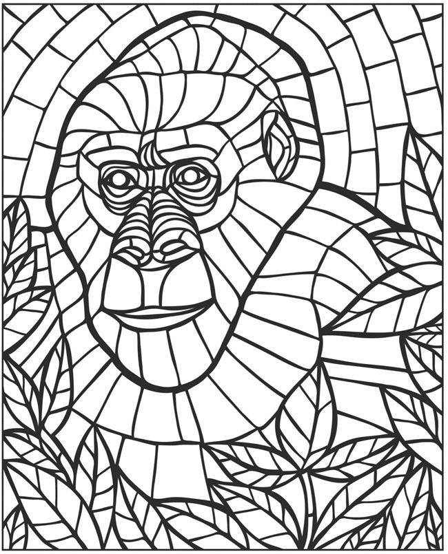 650x805 Best Eclectic Wildlife Images On Coloring Books