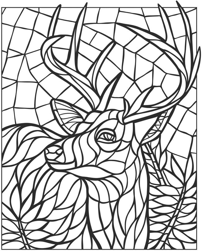 650x808 Dover Coloring Dover
