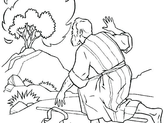 564x425 Moses Burning Bush Coloring Page Epic And Burning Bush Coloring