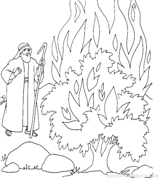 650x728 Baby Moses Coloring Page Baby Coloring Page This Is Baby Coloring