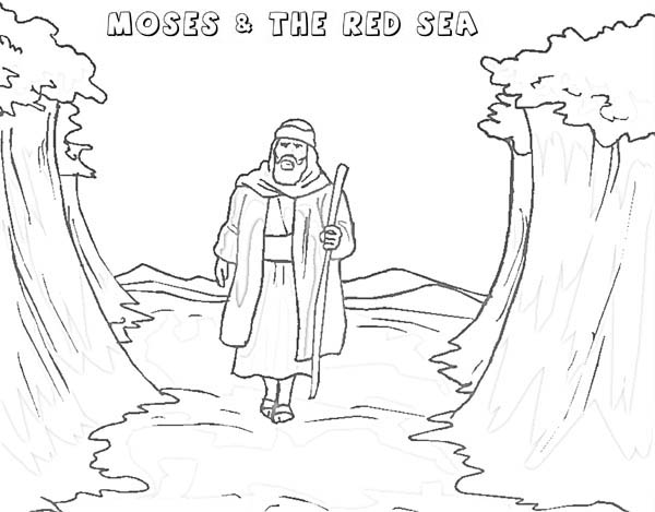 600x469 Moses Walking Through Red Sea Coloring Page Color Luna