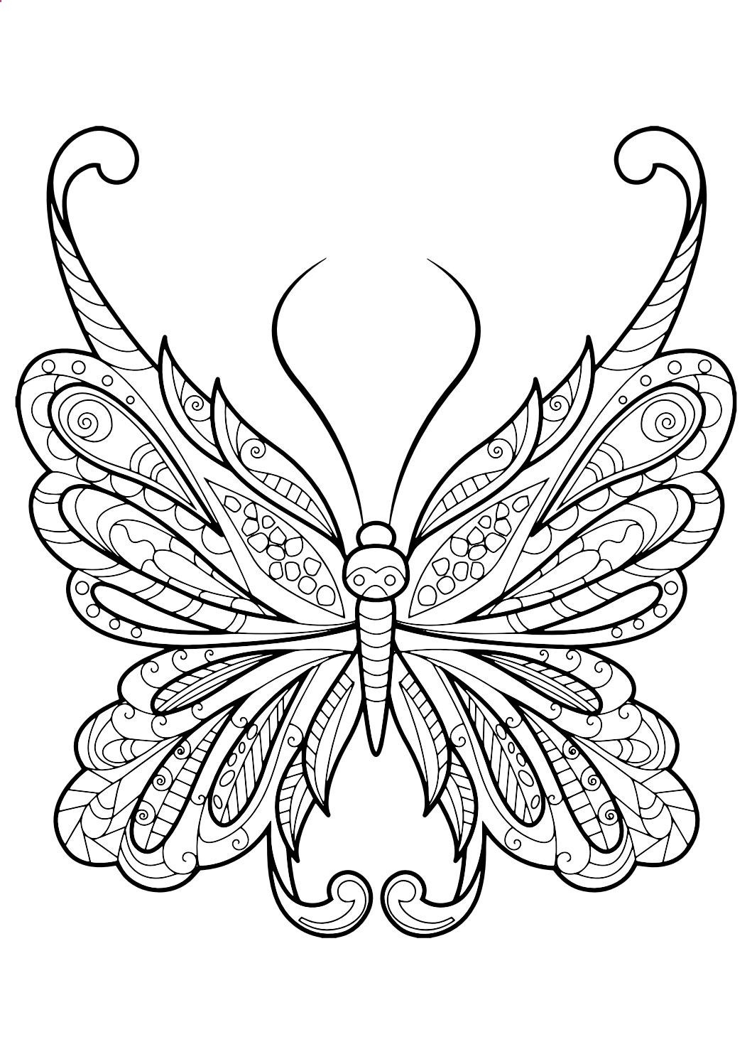 1059x1497 Moth Coloring Pages Free Coloring For Kids