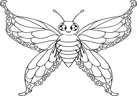 476x333 Moth Coloring Pages Printable Page Image Clipart Images