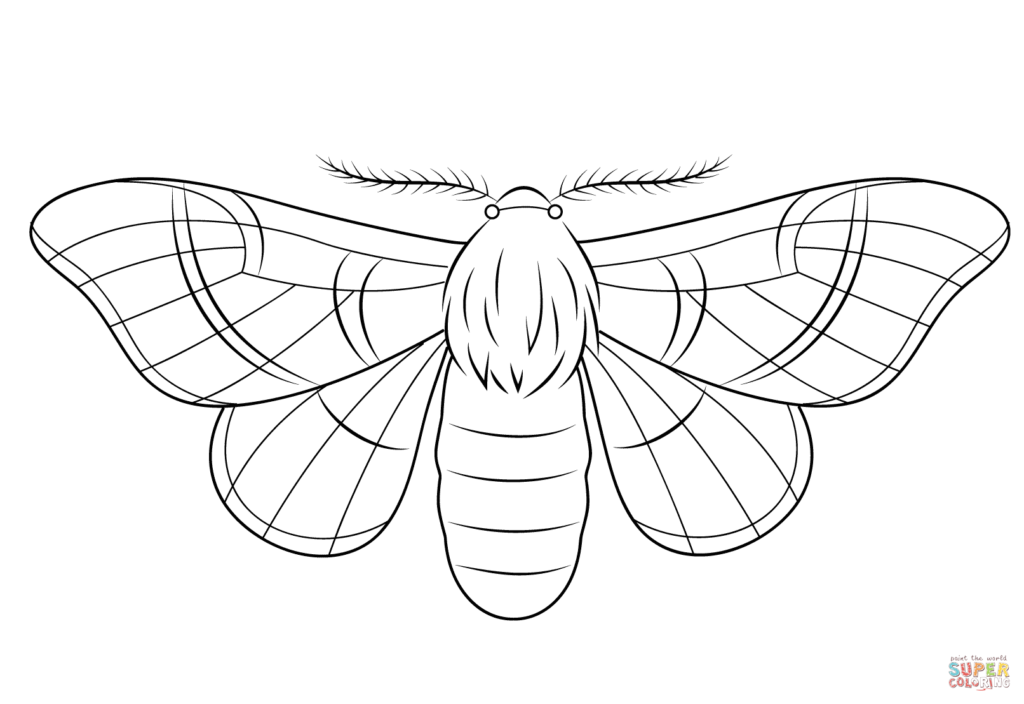 1024x704 Silkmoth Coloring Page Free Printable Coloring Pages Silk Worm
