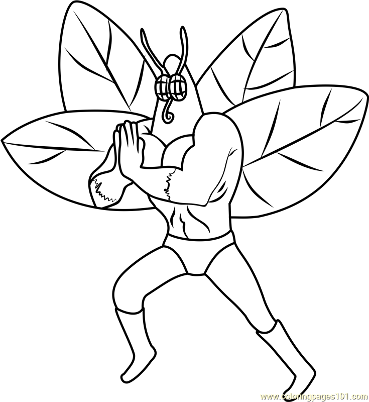 735x800 The Moth Coloring Page