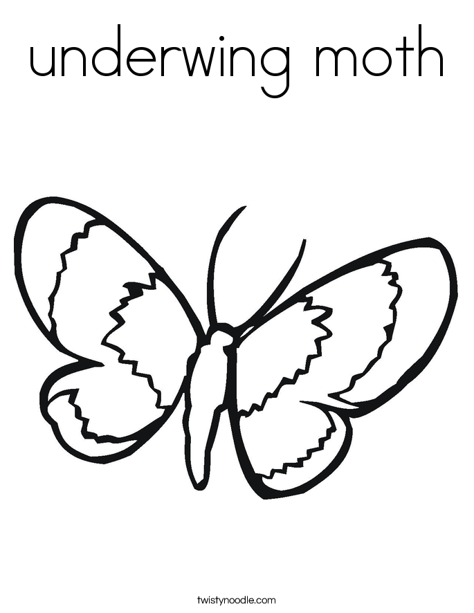 685x886 Underwing Moth Coloring Page