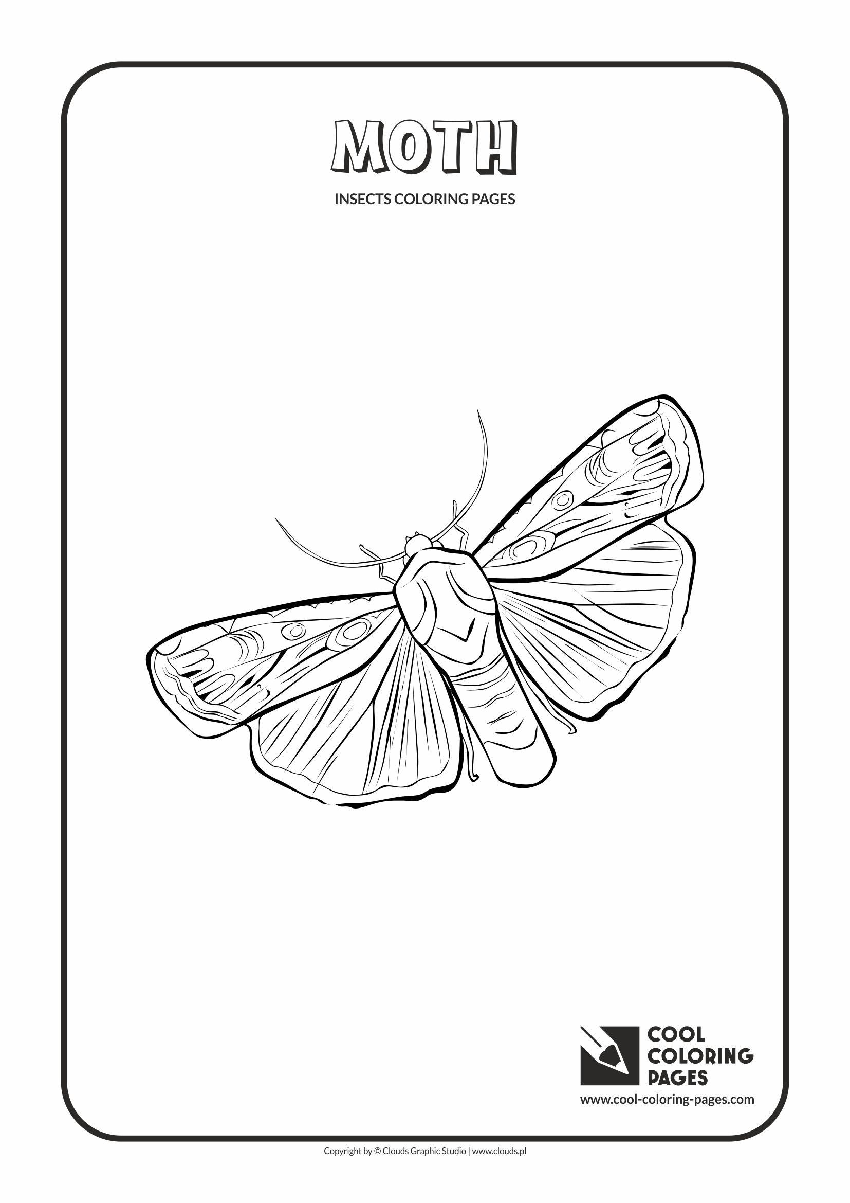 1654x2339 Cool Coloring Pages Moth Coloring Page