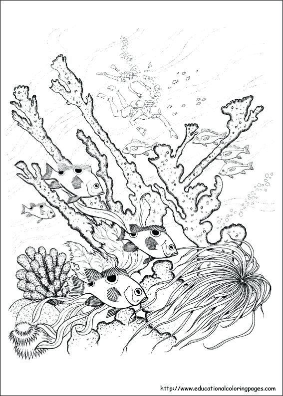 Mother Nature Coloring Pages At Getdrawings Com Free For Personal