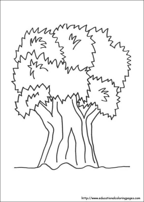 567x794 Nature Coloring Pages