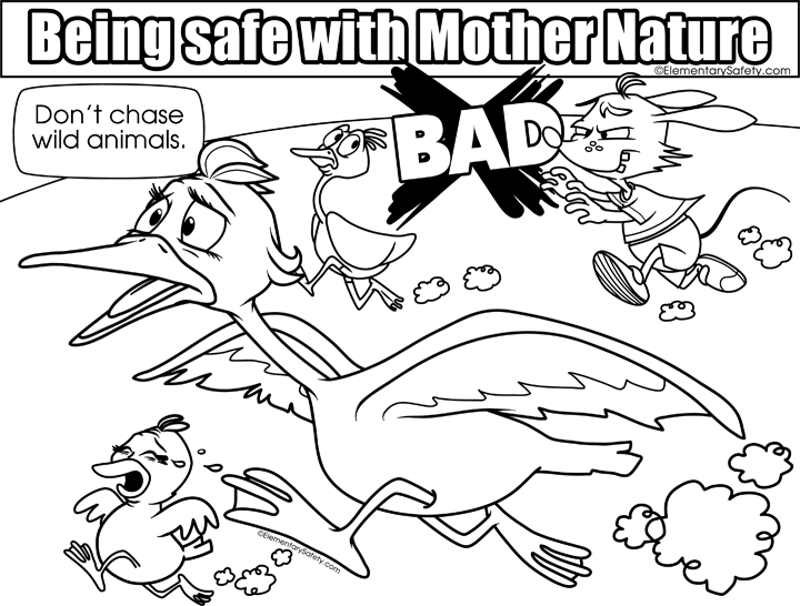 720x546 Dont Chase Wild Animals Coloring Mother Nature Safety