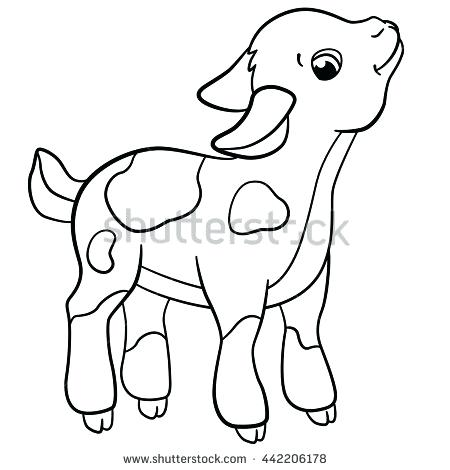 450x470 Goat Coloring Pages Coloring Pages Farm Animals Little Cute Stock